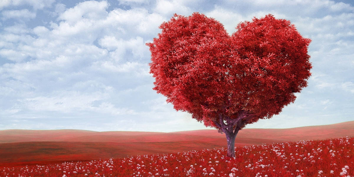 Self-love, the secret power that can transform your life